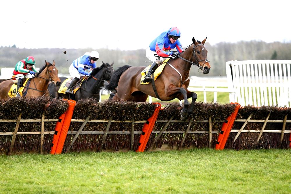 The Racecourse Newbury, 08-02-14.