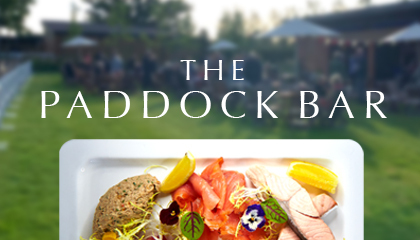 The Paddock Bar