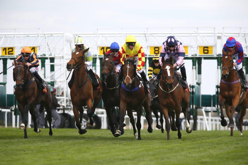 Al Shaqab Lockinge Day with Ladies Day - Newbury Racecourse